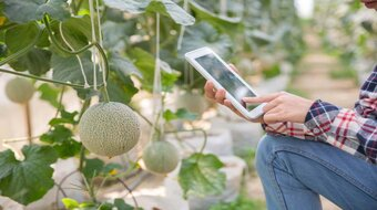 IoT-Based Smart farming Solution