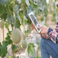 IOT-SMART FARMING